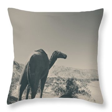 In The Hot Desert Sun Throw Pillow by Laurie Search
