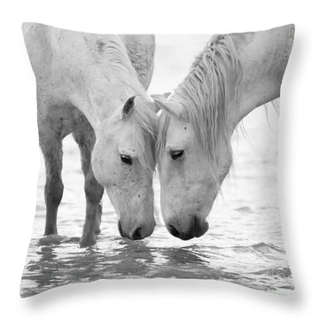 In The Water At Dawn II Throw Pillow by Carol Walker