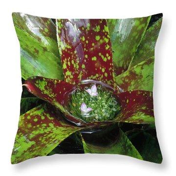 Inca Bromeliad Detail Throw Pillow by Gerry Ellis