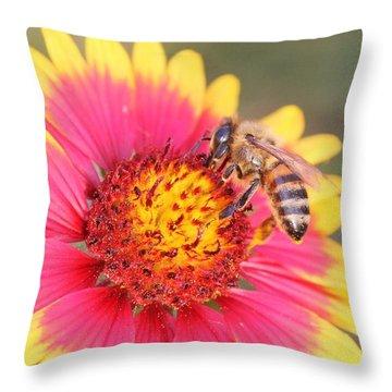 Indian Blanket Aka Firewheel And Bee Throw Pillow by Lorri Crossno