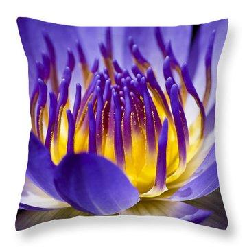 Inner Glow Throw Pillow by Priya Ghose
