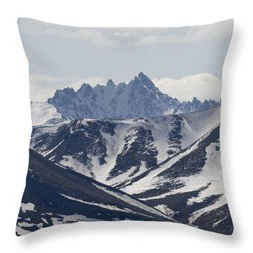 Inside Denali National Park Throw Pillow by Tara Lynn