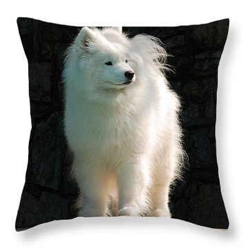 Intent Throw Pillow by Lois Bryan