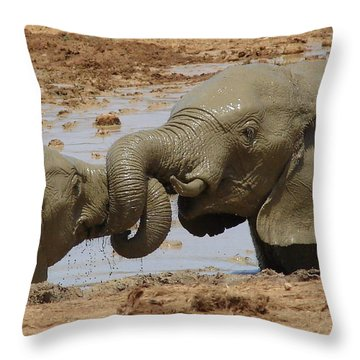 Intertwined Throw Pillow by Ramona Johnston
