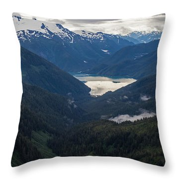 Into The Wild Throw Pillow by Mike Reid