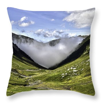 Throw Pillow featuring the photograph Invasion by Thierry Bouriat