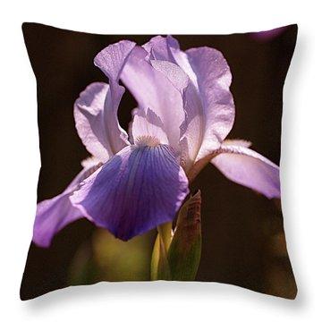 Iris Aglow Throw Pillow by Rona Black