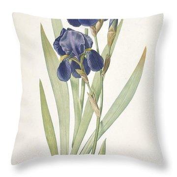 Iris Germanica Bearded Iris Throw Pillow by Pierre Joseph Redoute