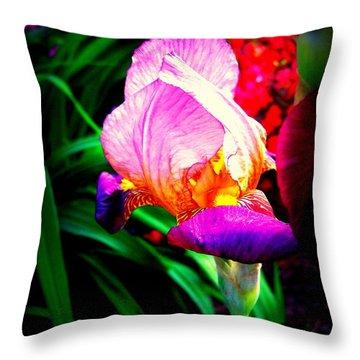 Iris Glow Throw Pillow by Janine Riley