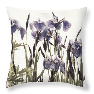 Iris In The Park Throw Pillow by Priska Wettstein
