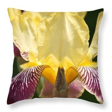 Iris Throw Pillow by Jolanta Anna Karolska
