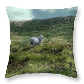 Irish Countryside Throw Pillow by Kandy Hurley