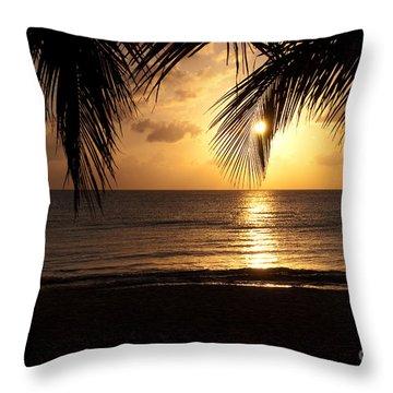 Island Sunset Throw Pillow by Charles Dobbs