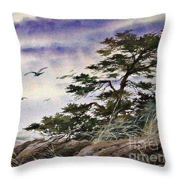 Island Sunset Throw Pillow by James Williamson