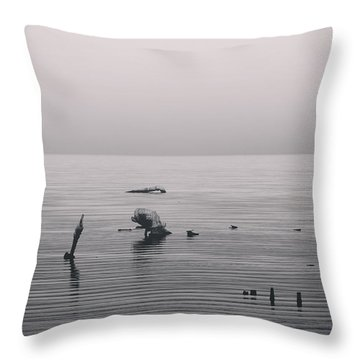 It Was Lonely There Throw Pillow by Laurie Search