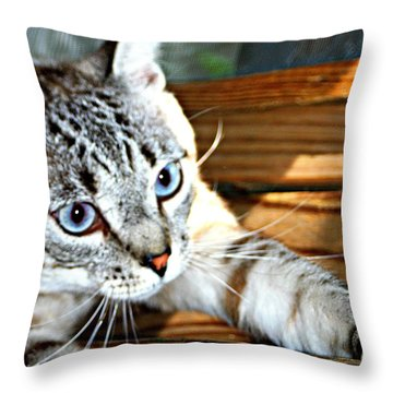 It's A Stretch Throw Pillow by Barbara S Nickerson