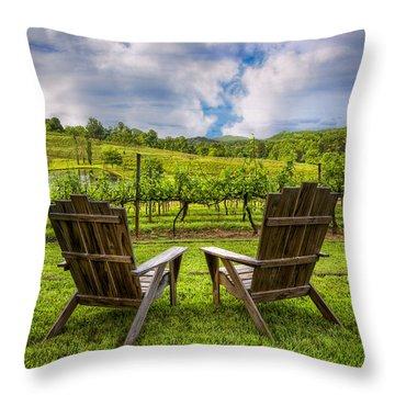 It's Happy Hour Throw Pillow by Debra and Dave Vanderlaan
