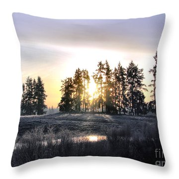 January Morning Throw Pillow by Rory Sagner