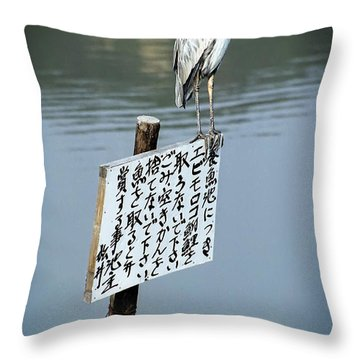 Japanese Waterfowl - Kyoto Japan Throw Pillow by Daniel Hagerman