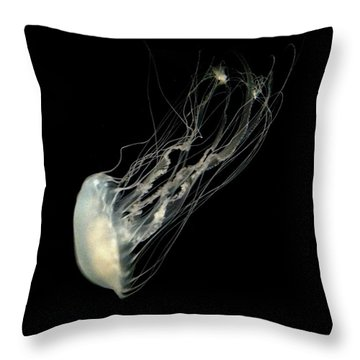 Jelly Fish Throw Pillow by Robin Lewis