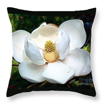 John's Magnolia Throw Pillow by Barbara Chichester