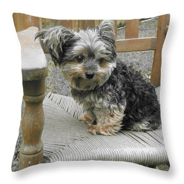 Jolie II Throw Pillow by Beth Vincent