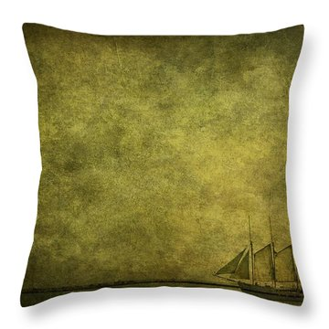 Journey Home Throw Pillow by Andrew Paranavitana