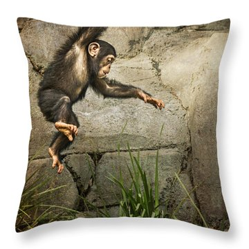 Jump For Joy Throw Pillow by Jamie Pham