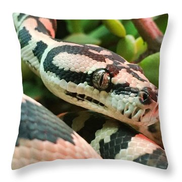 Jungle Python Throw Pillow by Kelly Jade King