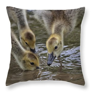 Just Babes Throw Pillow by Karol Livote