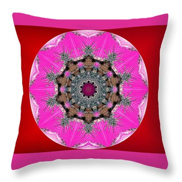 Kaleidoscope Throw Pillow by Mike Breau