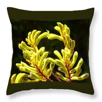 Kangaroo Paw Yellow Throw Pillow by Margaret Saheed