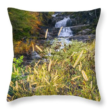 Kent Falls Throw Pillow by Bill Wakeley