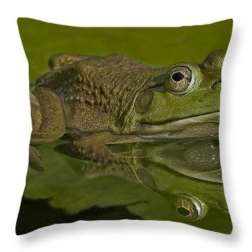 Kermit Throw Pillow by Susan Candelario