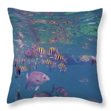 Keys Reef Throw Pillow by Carey Chen