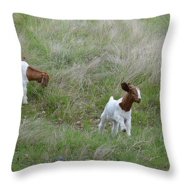 Kids At Play Throw Pillow by Lynn Bauer
