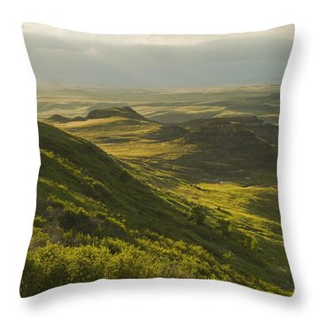 Killdeer Badlands In The East Block Of Throw Pillow by Dave Reede