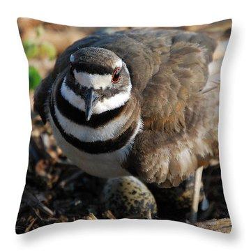 Killdeer Mom Throw Pillow by Skip Willits