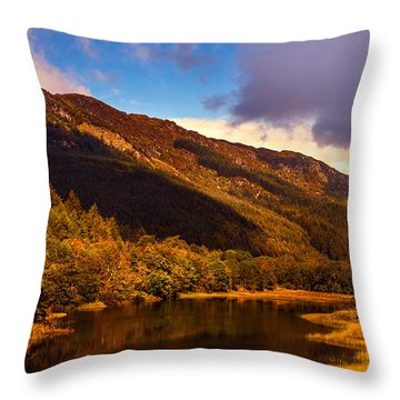 Kingdom Of Nature. Scotland Throw Pillow by Jenny Rainbow