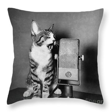 Kitten On The Radio Throw Pillow by Syd Greenberg