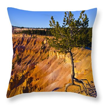 Know Your Roots - Bryce Canyon Throw Pillow by Jon Berghoff