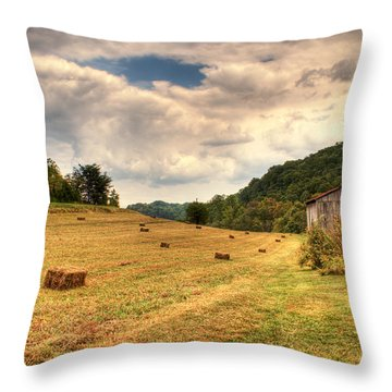 Lacy Farm Morgan County Kentucky Throw Pillow by Douglas Barnett