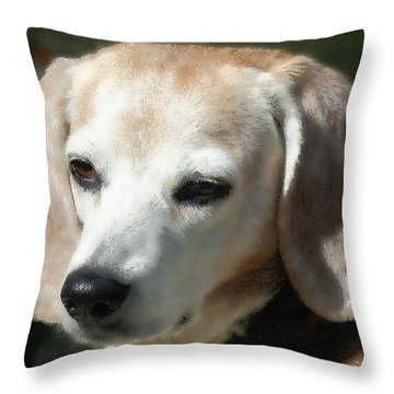 Lady 16 Throw Pillow by April Patterson