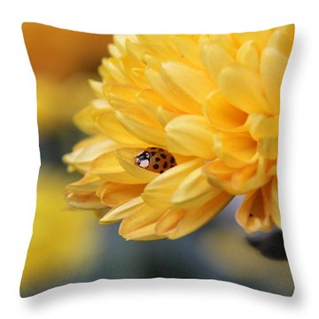 Lady Bug Throw Pillow by Adrienne Franklin
