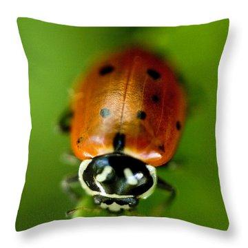 Ladybug On Green Throw Pillow by Iris Richardson