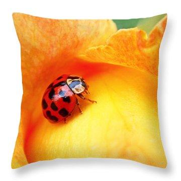Ladybug Throw Pillow by Rona Black