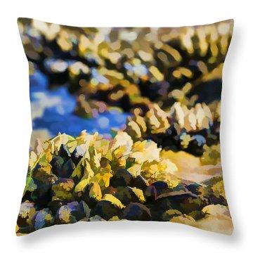 Laguna Beach Tide Pool Pattern 4 Throw Pillow by Scott Campbell