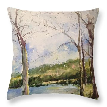 Lake #1 North Little Rock Throw Pillow by Robin Miller-Bookhout