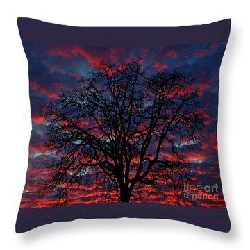 Lake Oswego Sunset Throw Pillow by Nick  Boren