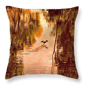Landing Duck Absrtact Throw Pillow by Leif Sohlman